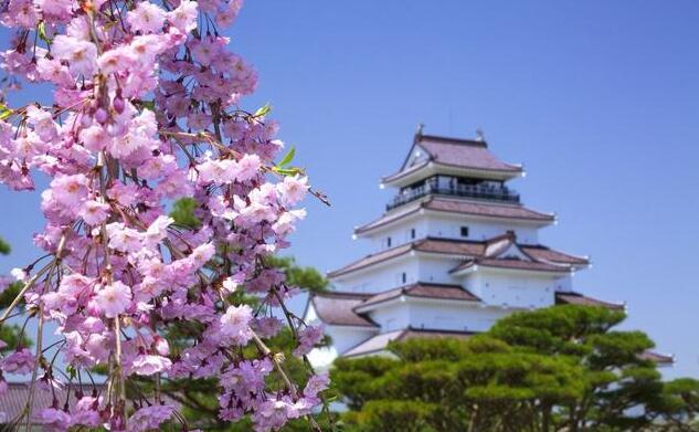 日本留学 申请研究生需要满足什么条件?