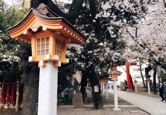 日本语言学校暴增 留学生需谨慎选择