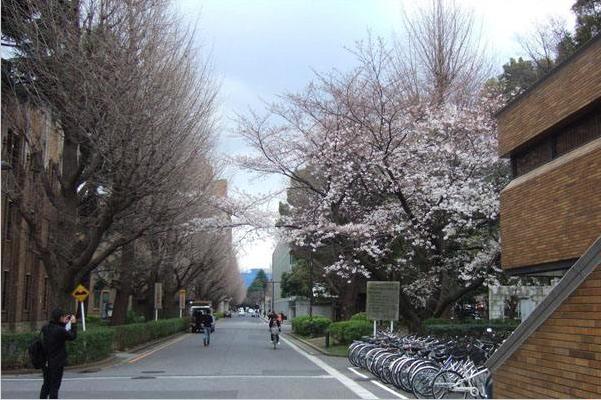 日本学生纷纷远离核能业 新能源专业前景被看好