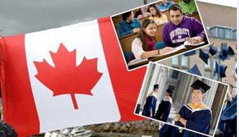 加拿大有哪些热门文科专业