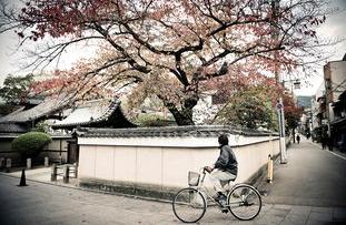 日本留学安全防范须知