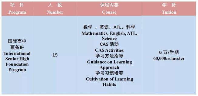 苏城外国语学校国际高中2019-2020学年春季招生计划