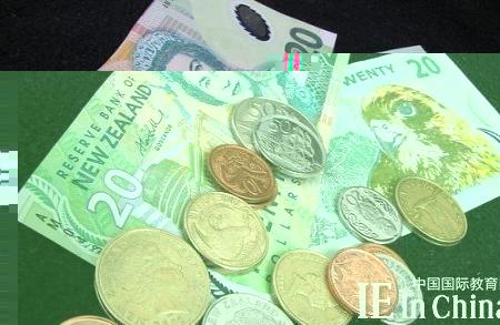 去新西兰留学一年费用多少
