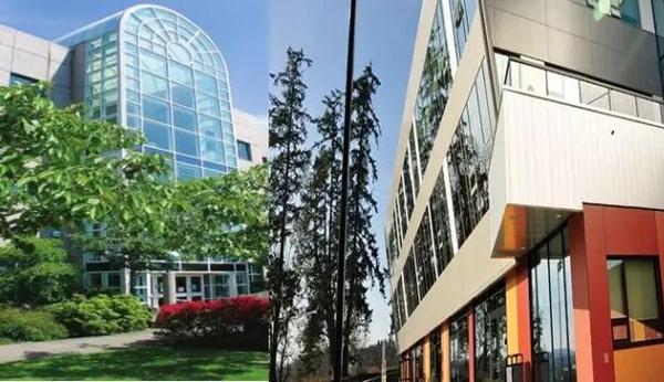 申请加拿大卡莫森学院免100刀申请费