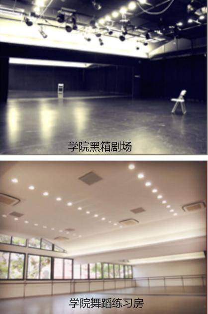 新加坡莱佛士音乐学院舞蹈学院招生信息