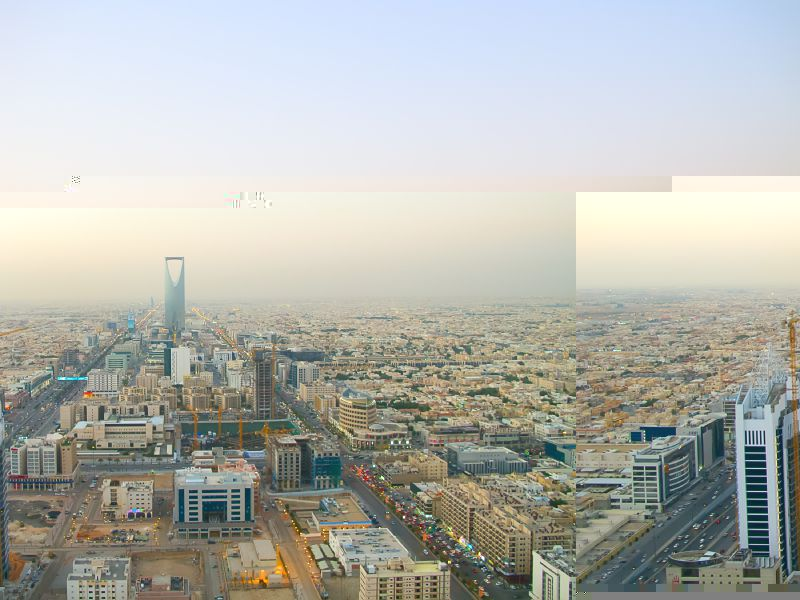 阿拉伯地区顶尖大学Top15