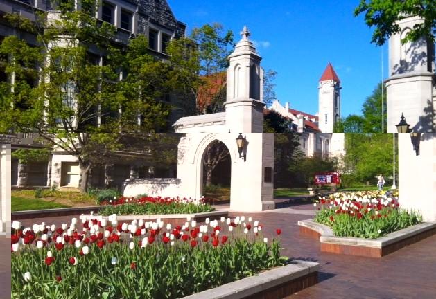 印第安纳大学伯明顿分校排名一览