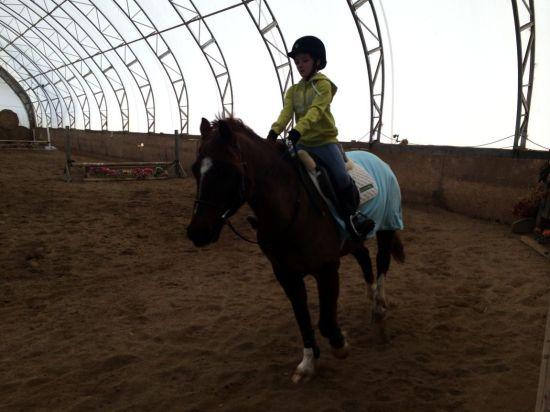 国际学校培养全能人才 能骑马会种菜