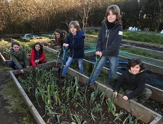 英国一小学没校长不考试 学生可爬树种菜