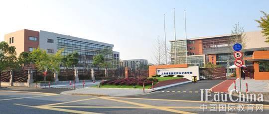 沪上最贵国际教育学校落户临港 小学、初中部2016-17学年招生