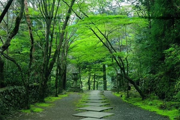 日本留学 留学生赴日入校前的准备常识