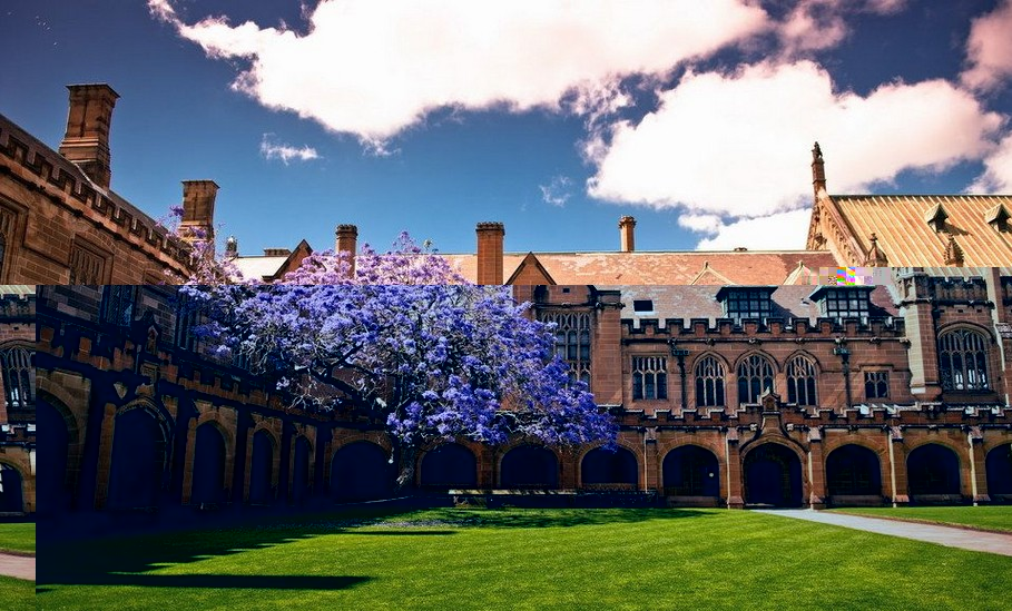 悉尼大学突然更改毕业时间引留学生强烈不满