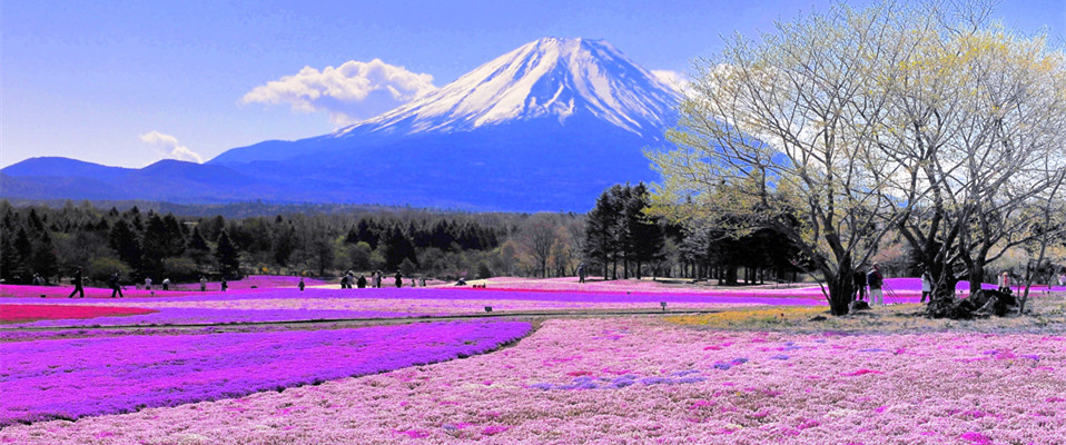 留学生活游记之我在日本