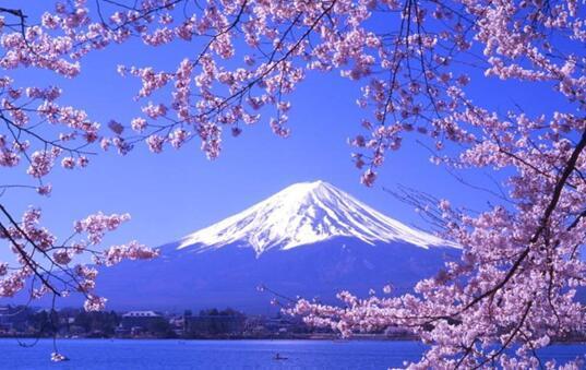 """日本""""在留卡""""让你的留学更优惠"""