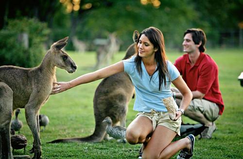 不骗你!来澳洲留学选农业专业就对了