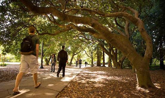 美国公立大学能够KO私立大学吗?