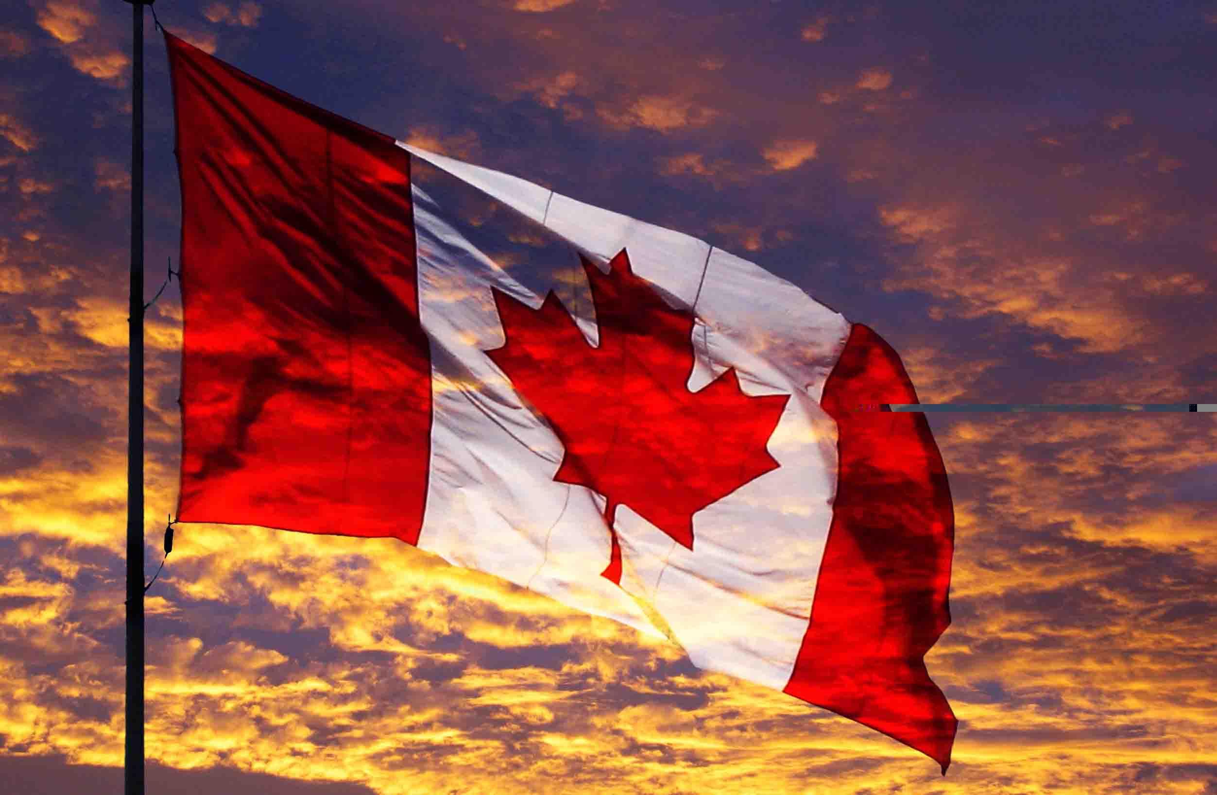 想要提高加拿大留学签证率 这些问题你注意了吗?