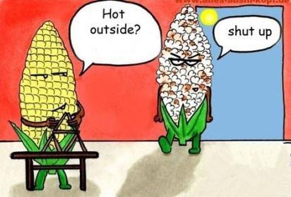 前方高能 留学生遇到高温天气千万要淡定!