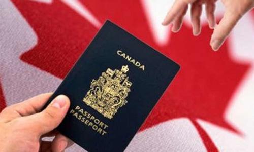 如何续签加拿大学习签证
