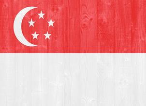 高中还未毕业的学生该如何申请新加坡大学?