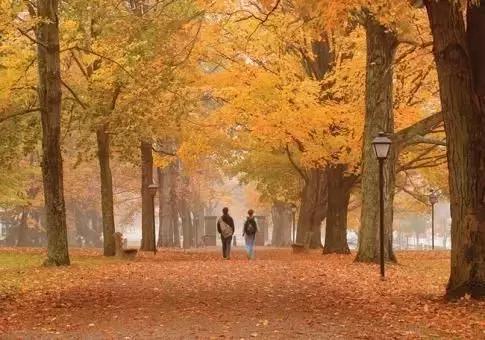 福布斯全球最美大学TOP10 留学的你值得一去