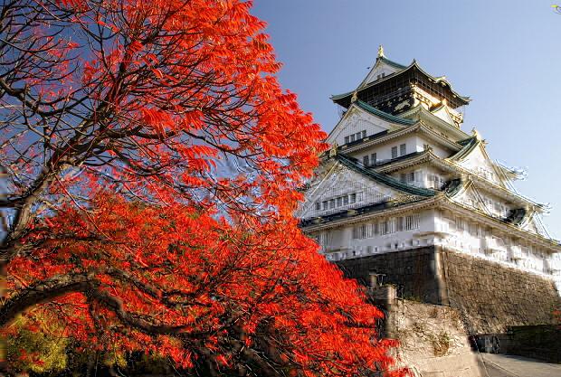干货整理:申请日本大学院的方式及申请条件