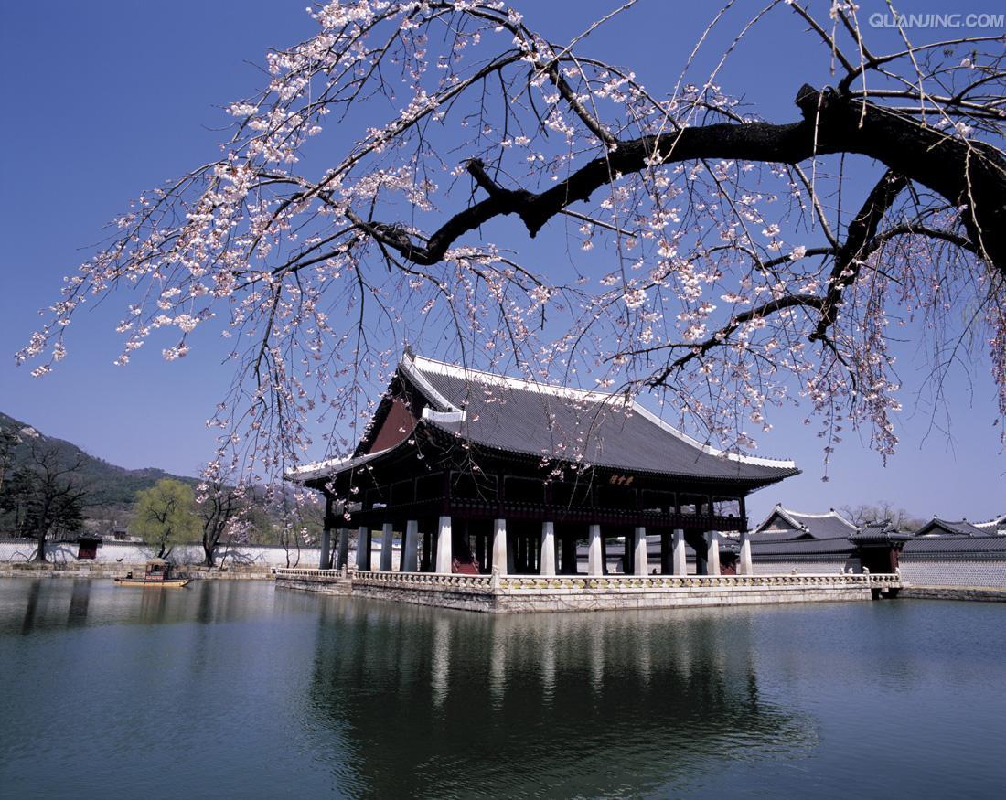 韩国留学热门专业及未来就业方向解析(一)