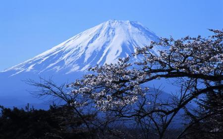 想要快速融入日本留学生活 你要做好这几件事