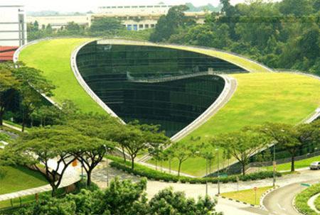 新加坡国立大学与南洋理工大学热门专业