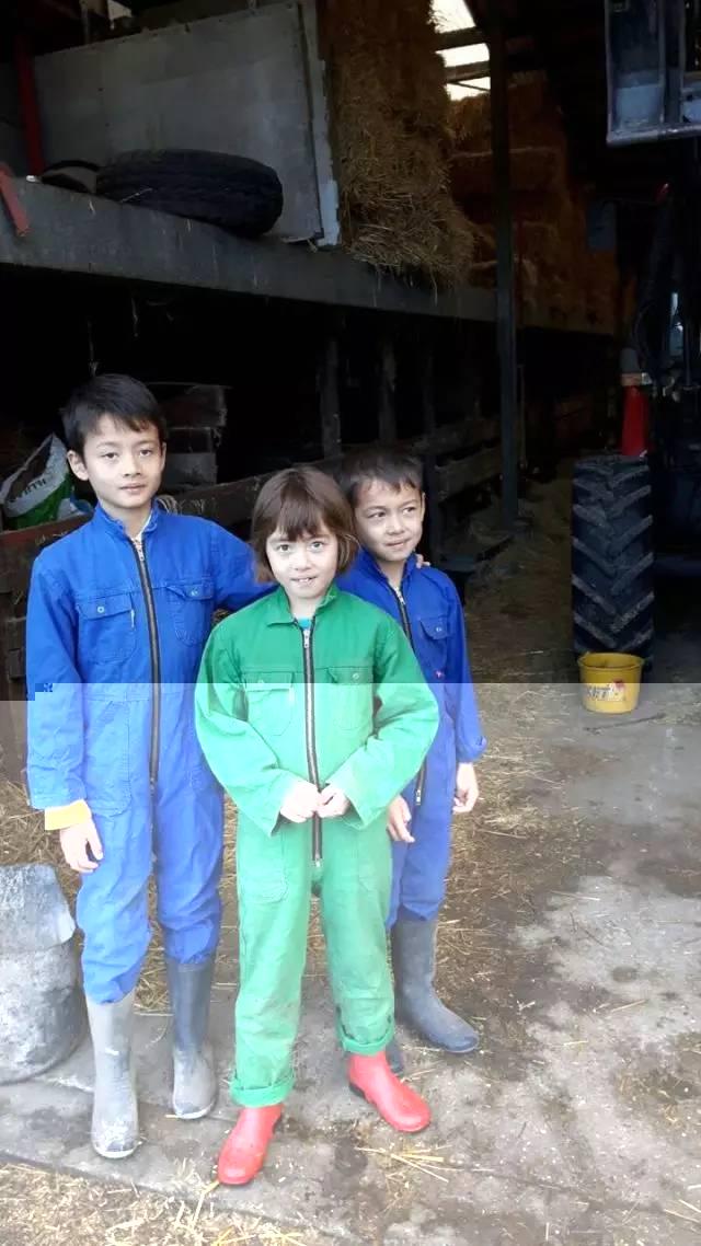 """中加枫华国际学校家长专访:荷兰家庭的""""非主流""""教育"""