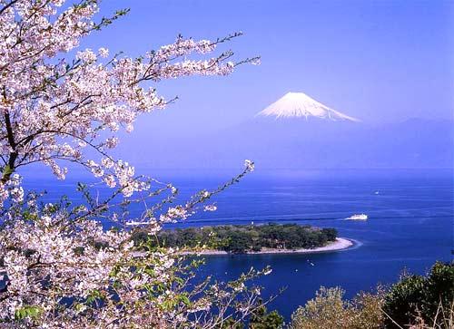 留学日本 五个角度揭开G30项目神秘面纱