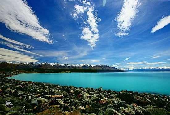 新西兰热门语言课程 给你一口流利的英语