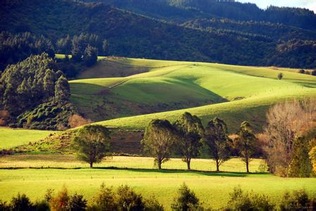 新西兰留学好到爆 你信吗?