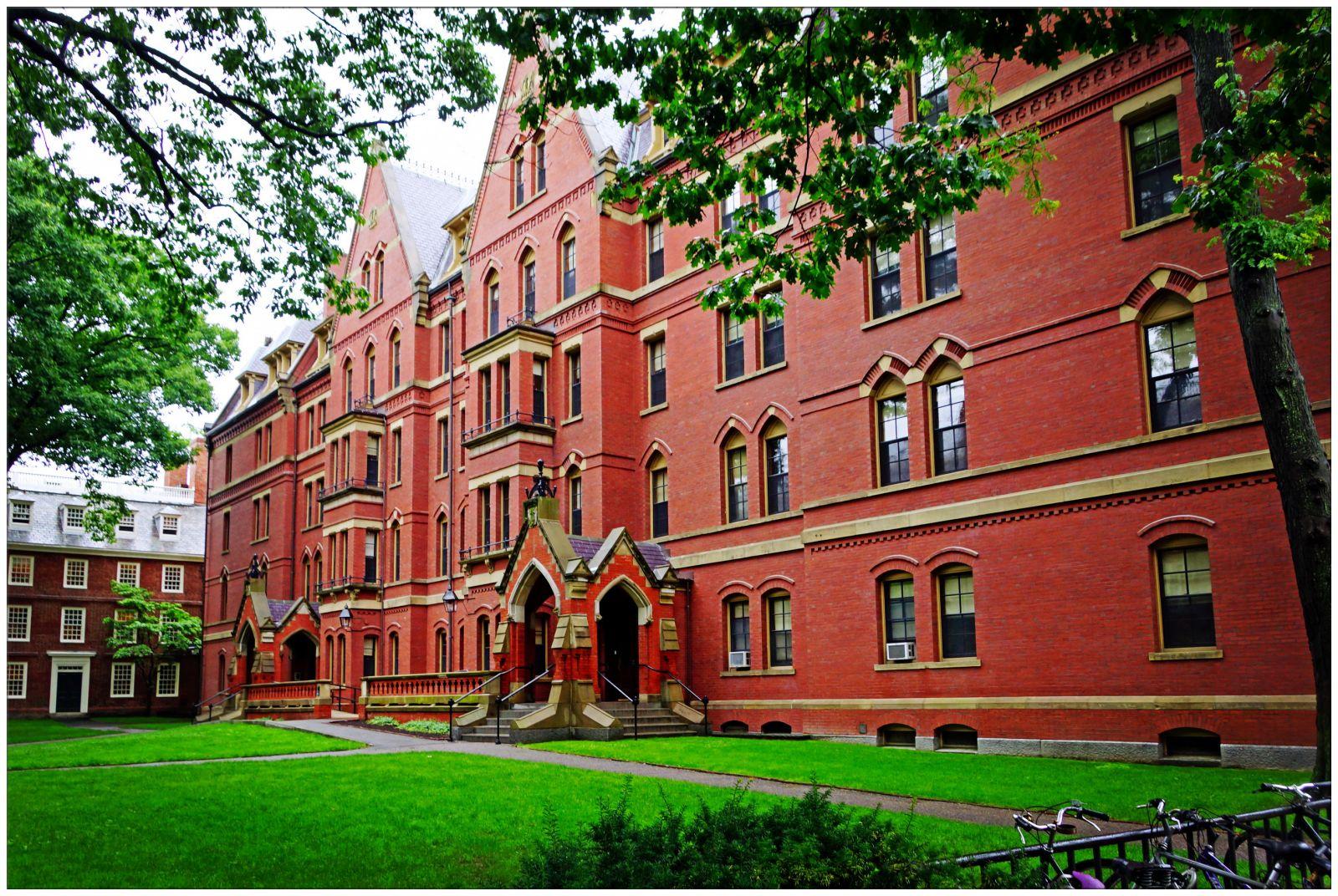 留学生在哈佛学会了啥?