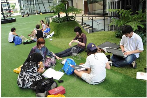 全球IB满分者50%以上是新加坡考生