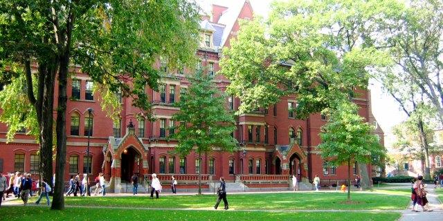 哈佛大学非白人新生首次过半 川普很生气!