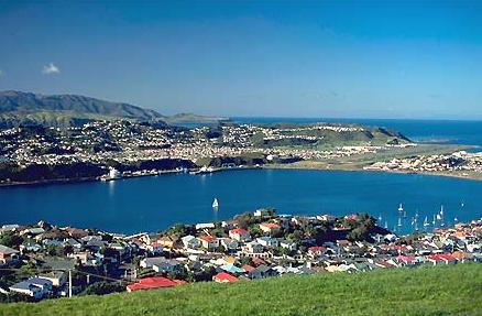新西兰国际学生数量创新高 留学优势深度解读
