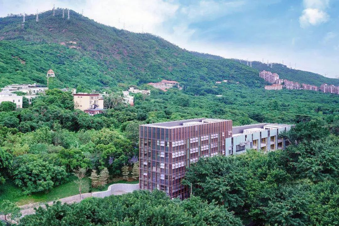 深圳南山国王学校